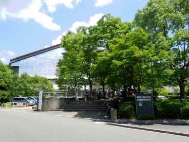 黄檗公園の画像1