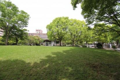 黄檗公園の画像2