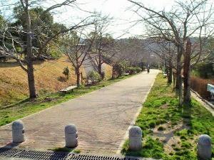 東山公園の画像