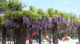 城南荘児童公園