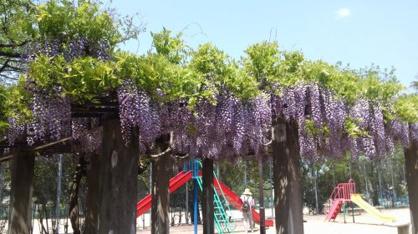 城南荘児童公園の画像1