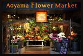 青山フラワーマーケット東京ドームシティ店