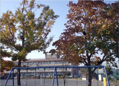 鴻巣市立 共和小学校の画像1