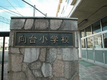 中野区立向台小学校の画像2