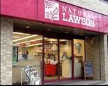 ナチュラルローソン 新川一丁目店