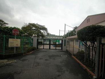 中野区立白桜小学校の画像3