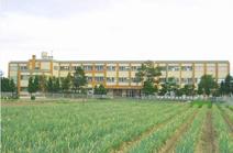 崎津小学校