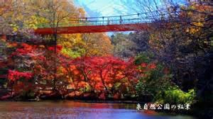 泉自然公園の画像2