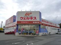 ウェルネス東福原店