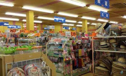 ザ・ダイソー米子ガイナ店の画像1