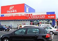 ウェルネス両三柳店の画像1