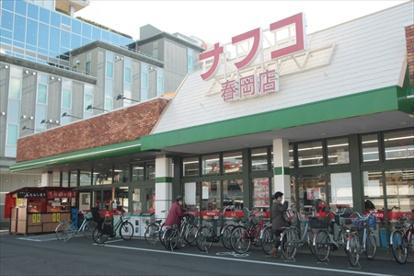 ナフコ春岡店の画像1