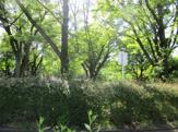 栗山公園健康運動センター