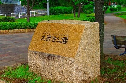 大百池公園の画像1