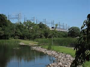 大百池公園の画像4
