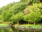 大百池公園の画像5