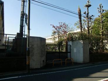 中野区立江原小学校の画像5