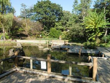 中野区立哲学堂公園の画像5