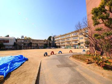 松戸市立 小金小学校の画像1