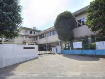 松戸市立 常盤平第三小学校の画像1