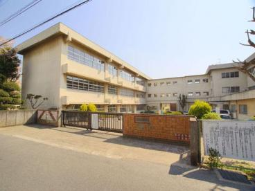 松戸市立 上本郷小学校の画像1