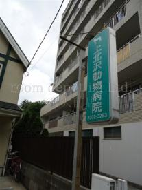 上北沢動物病院の画像1