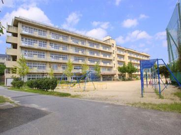 松戸市立 殿平賀小学校の画像1