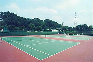 有吉公園スポーツ施設庭球場の画像2