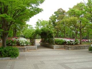 おゆみ野はるのみち公園の画像2