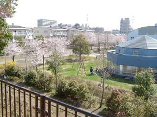 おゆみ野はるのみち公園の画像3