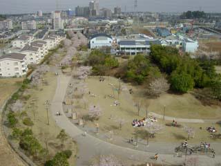 おゆみ野はるのみち公園の画像4