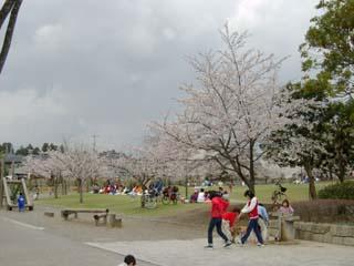 おゆみ野はるのみち公園の画像5