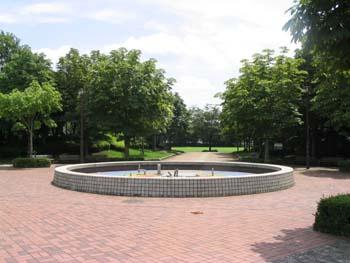 おゆみ野なつのみち公園の画像1