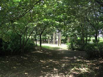おゆみ野なつのみち公園の画像3