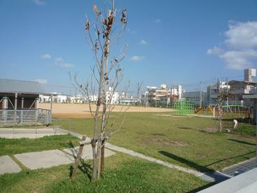 那覇市立 安謝小学校の画像3