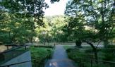 芹ケ谷公園