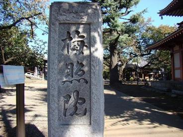 新井薬師 梅照院の画像2