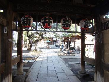 新井薬師 梅照院の画像5