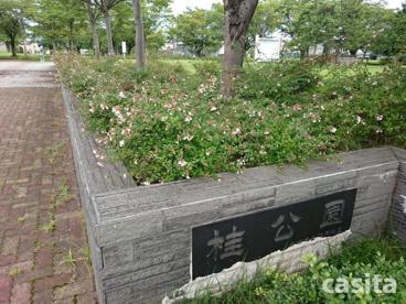 桂公園の画像1