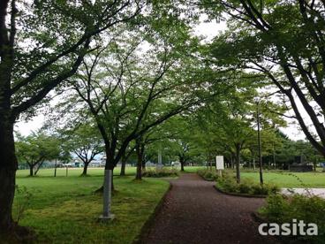 桂公園の画像5