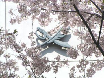 開成中学校の画像5