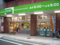 ミニコープ 日暮里店の画像4