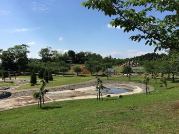 福岡堰さくら公園の画像3