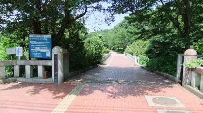 北本自然観察公園の画像1