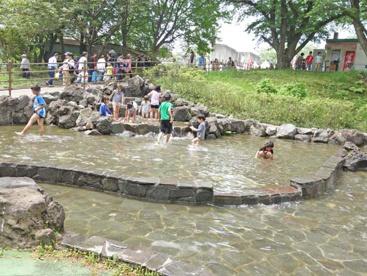 北本市子供公園の画像1