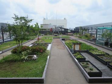 台東区役所の画像3