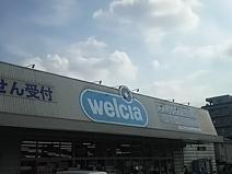 ウエルシア川口芝店