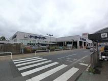 ケーヨーデイツー成田店