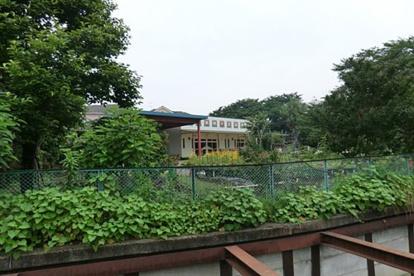 田無向ケ丘幼稚園の画像1
