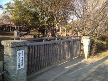 鴻巣ひかり幼稚園の画像1
